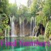 Find Numbers – Landscapes 2