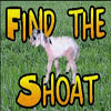 Find the Shoat v1.1