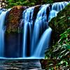 Find the Spots-Falls