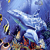 Fishes in the ocean slide puzzle