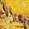 Five aries on the woods puzzle