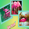 Flamingos in tropical island puzzle