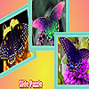 Flower garden and butterflies puzzle