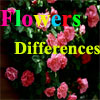 Flowers Differences