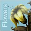 Flowers on line