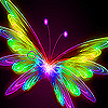 Flying bright  butterfly slide puzzle