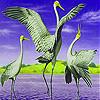 Flying flamingo slide puzzle