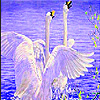 Flying swans in water slide puzzle