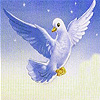 Flying white seagull slide puzzle