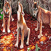 Fox cubs in the woods puzzle