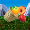 Fresh Fruit – Gold Match
