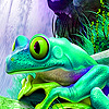Frog on the waterfall puzzle