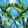 Frogs kissing slide puzzle
