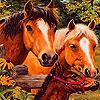 Grand farm horses slide puzzle