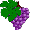 Grape Jıgsaw Puzzle
