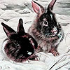 Gray rabbits in snow puzzle