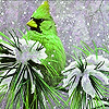 Green bird on the snow garden puzzle