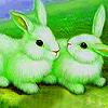 Green garden rabbits puzzle