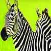 Green safari zebras puzzle