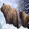 Grizzly bears and snow puzzle