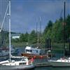 Harbor Jigsaw
