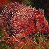 Hedgehog in farm slide puzzle
