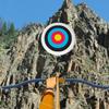 Hidden Targets-Rocks
