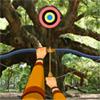 Hidden Targets-Wild Trees
