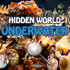 Hidden World: Underwater