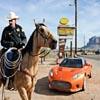 Horse & Car Sliding