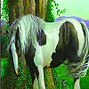 Horse in the garden slide puzzle