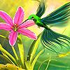 Hummingbird in the garden slide puzzle