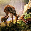 Hungry deers in the woods puzzle