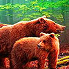 Hungry grizzly bears puzzle