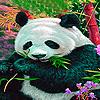 Hungry panda puzzle