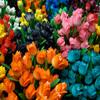 Jigsaw: Amsterdam Tulips