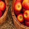 Jigsaw: Apples in Baskets