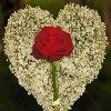 Jigsaw: Flower Heart
