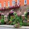 Jigsaw: Flower Restaurant