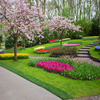 Jigsaw: Garden In Blossom