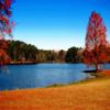 Jigsaw: Lake Autumn