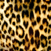 Jigsaw: Leopard Pattern
