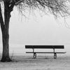 Jigsaw: Misty Bench