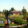 Jigsaw: Peaceful Garden