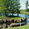 Jigsaw: Pond Island