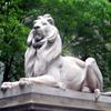 Jigsaw: Stone Lion