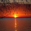 Jigsaw: Sunset Lake