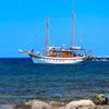 Jigsaw: Tourist Boat