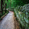 Jigsaw: Wall Path