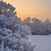 Jigsaw: Winter Landscape